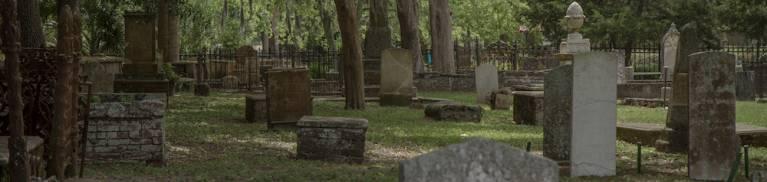 creepy cemetery scene